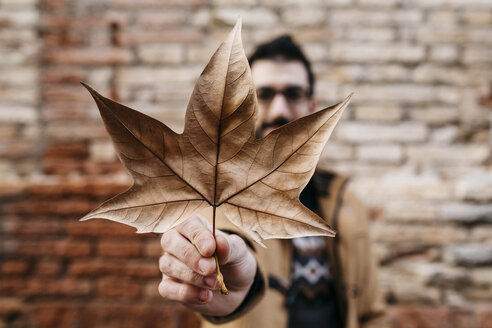 Close-up of man's hand holding autumn leaf with brick wall in background - JRFF02304