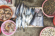 Vietnam, Hanoi, fish and seafood on sale at local market in the old town - WPEF01280