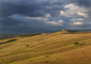 Italy, Tuscany, Crete Senesi, field landscape - WWF04732