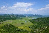 Montenegro, Lake Skadar near Poseljani - SIEF08300