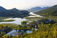 Montenegro, Lake Skadar, village Karuc - SIEF08312
