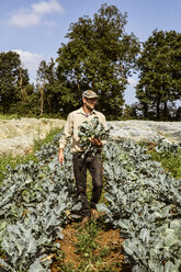 Smiling farmer walking in a field, carrying freshly harvested broccoli. - MINF09851