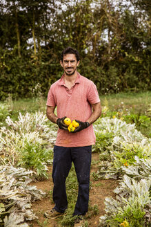 Farmer standing in field, holding freshly harvested yellow zucchinis, smiling at camera. - MINF09872