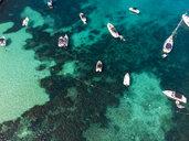 Spain, Mallorca, Palma de Mallorca, Aerial view of Calvia region, El Toro, Portals Vells - AMF06639