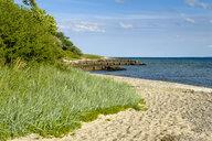 Denmark, Jutland, Sonderborg, beach at Sonderborg bay - UMF00920