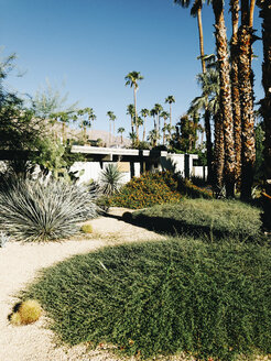 USA, Palm Springs, Garden in Front of Midcentury Modern Architecture - JUBF00309