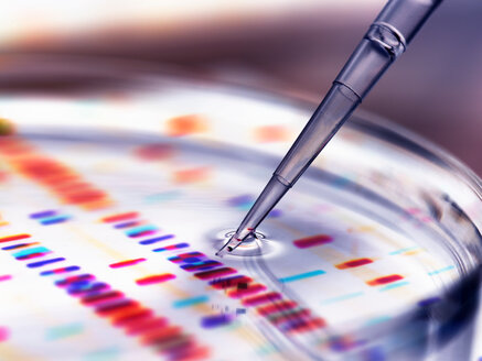Pipette adding sample to petri dish with DNA profiles in background - CUF46701