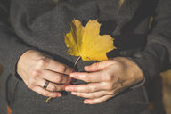 Close-up of pregnant woman holding autumn leaf - ASCF00926