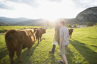 Father and son approaching cows in sunny field on rural farm - HEROF04881