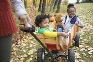 Girl sisters riding in wagon with teddy bear in autumn park - HEROF04941