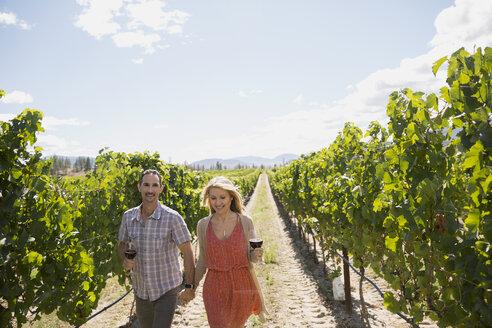 Couple holding hands wine tasting drinking red wine in sunny vineyard - HEROF05085