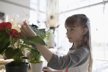 Curious girl touching plants in science center - HEROF05217