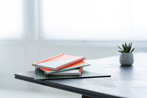 Stack of notebooks and potted plant on a table - AFVF02210