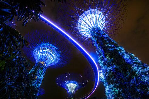 Singapore, Marina Bay, Gardens by the Bay, Super trees at night - SMA01200