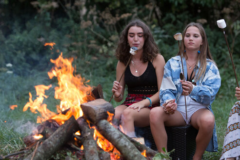 Friends toasting marshmallows at bonfire party in park - CUF47162