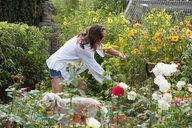 Woman working on garden - CUF47204