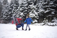Father and little son having a snowball fight in winter forest - ABIF01146
