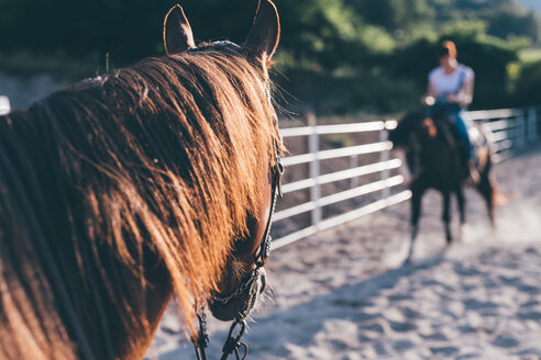 Horse riding in equestrian arena, shallow focus - CUF47501