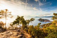 View from hill, Sestri Levante, Liguria, Italy - CUF47708