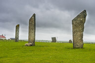 Unesco world heritage sight the Standing Stones of Stenness, Orkney Islands, United Kingdom - RUNF00994