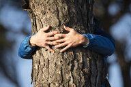 Spanien, Andalusien, Tarifa, Mann umarmt Baum, Baum - KBF00430