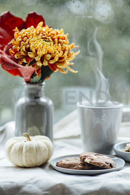 Cup of steaming coffee, cookies and autumnal decoration on window sill - JESF00200 - Jean Schwarz/Westend61