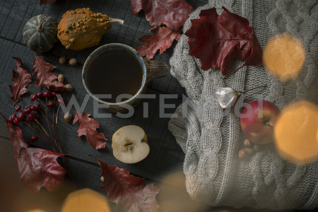 Cup of tea and autumnal decoration - JESF00209