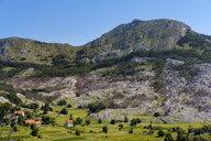 Berg Jezerski Vrh, Lovcen Nationalpark, bei Cetinje, Montenegro - SIEF08318