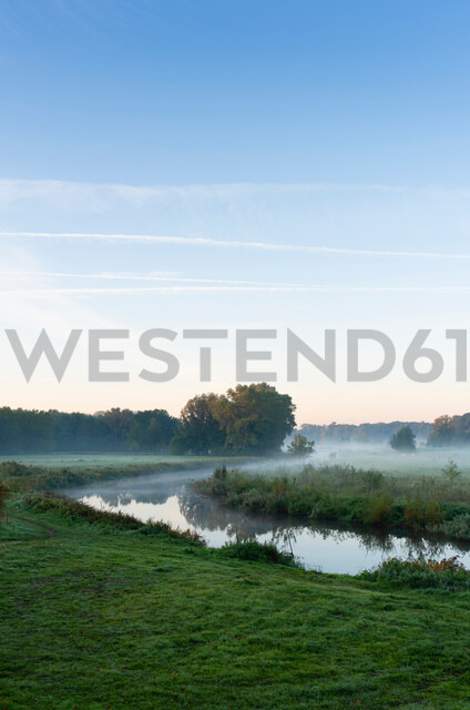 River Mark in early morning mist, Netherlands - CUF47926