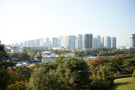 Skyline in daytime, national park in foreground, Seoul, South Korea - CUF48028