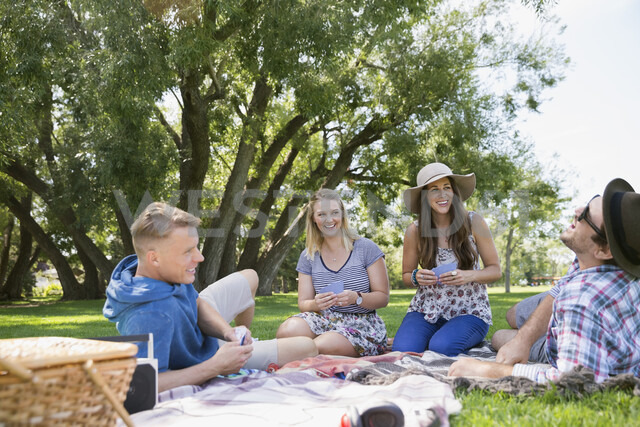 Couples playing cards on picnic blanket in summer park - HEROF05423