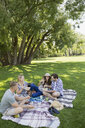 Couples eating on picnic blanket in grass in summer park - HEROF05426