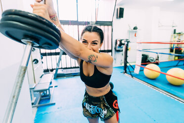 Female boxer lifting weights - CUF48417
