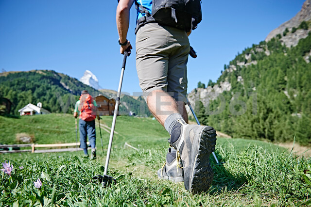 Hikers on lush green field, chalets in background, Mont Cervin, Matterhorn, Valais, Switzerland - CUF48435