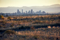 Landscape, skyline of skyscrapers in background, Denver, Colorado, USA - ISF20162