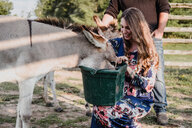 Couple feeding pet donkeys - ISF20231