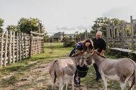 Couple feeding pet donkeys - ISF20243