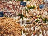 Italy, Naples, fish market - WWF04851