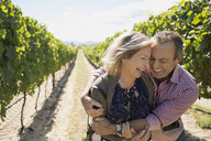 Senior couple laughing and hugging in sunny vineyard - HEROF06000