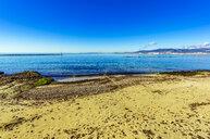 Spain, Mallorca, beach near Portixol - THAF02423