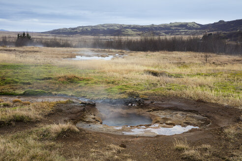 Iceand, Haukadalur valley, Geothermal site with hot spring, geyser - WIF03750