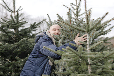 Smiling man hugging Christmas tree on a plantation - KMKF00741