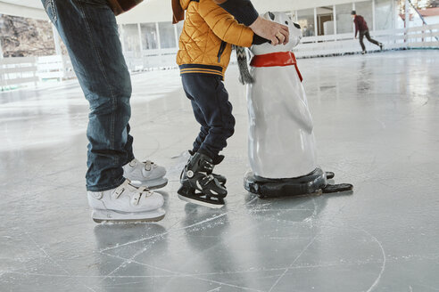Grandfather and grandson on the ice rink, ice skating, using ice bear figure as prop - ZEDF01802