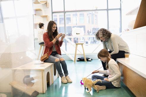 Multi-generation women playing with kitten in cat cafe - HEROF07151