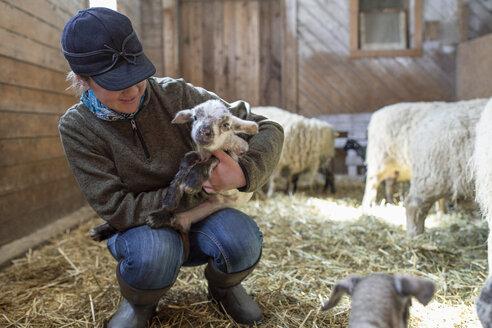 Female farmer holding baby lamb in barn - HEROF07391