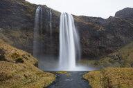 Island, Skogar, Seljalandsfoss Waterfall - WIF03784