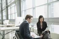 Business people reviewing paperwork in office - HEROF07447