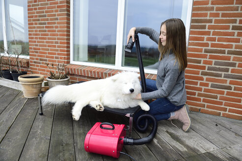 Girl blow-drying white dog on terrace - ECPF00301