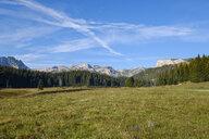 Montenegro, Durmitor National Park, Durmitor massif, mountain pasture Poljana - SIEF08360