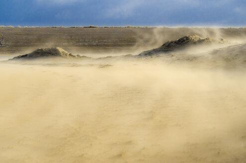 Netherlands, Goeree-Overflakkee, sandstorm in dunes - MHF00497